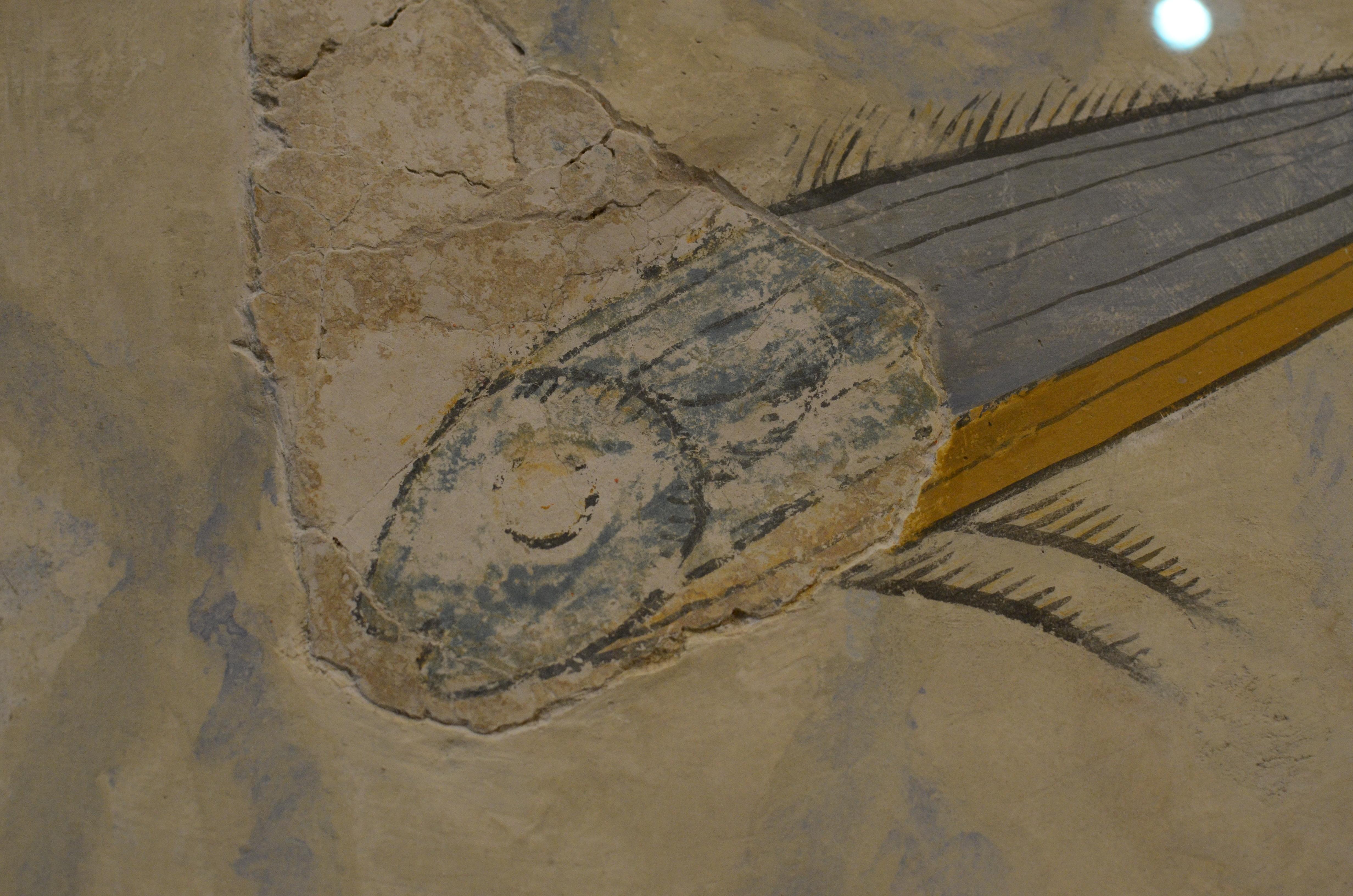 Minoan Fresco of Fish - Knossos